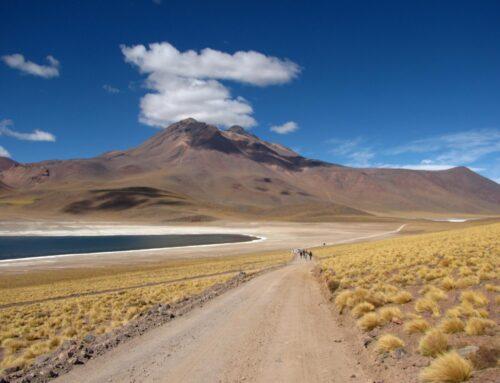 Deserto do Atacama: descubra as exuberantes paisagens do lugar mais árido do planeta